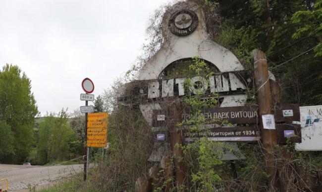 """Природен парк """"Витоша"""" е в едно доста добро състояние"""
