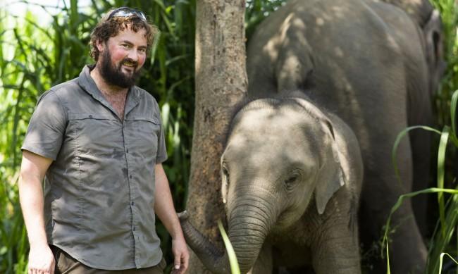 Най-голямата болница за слонове отвътре с д-р Пол О'Донахю