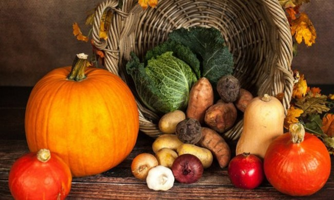 Внасяме все повече плодове и зеленчуци, засаждаме все по-малко