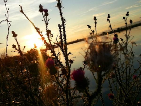 Утре сутринта астрономическото лято ще настъпи с по-топло време и