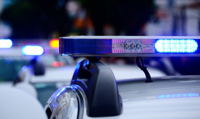 Трима българи са заловени с 6 т. хашиш на яхта в Палермо