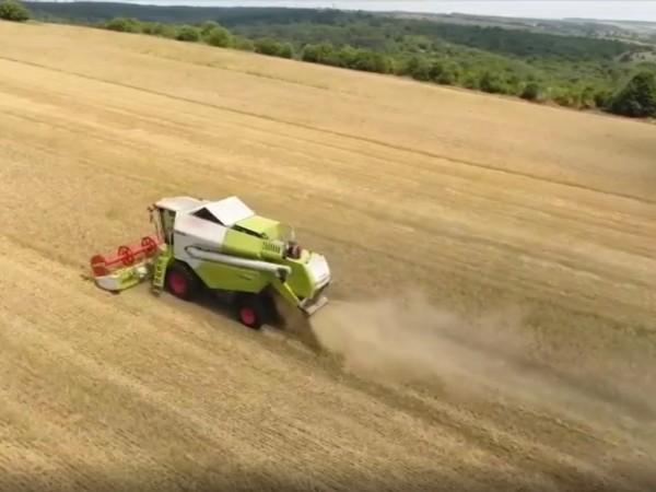Опасения за житната реколта заради обилните дъждове. Зърнопроизводителите се готвят