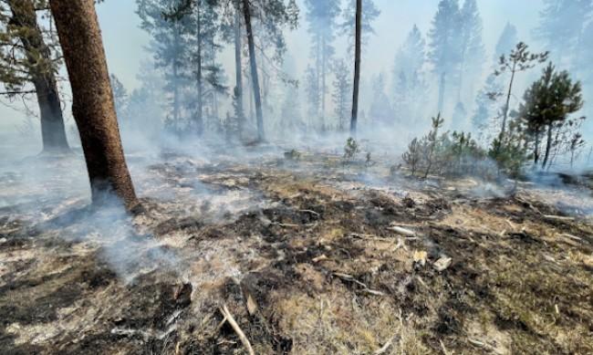 Над 2000 огнеборци се борят с пожар в щата Орегон