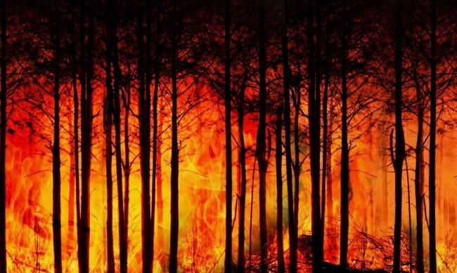 Големи пожари в Канада, евакуират близо 6000 души
