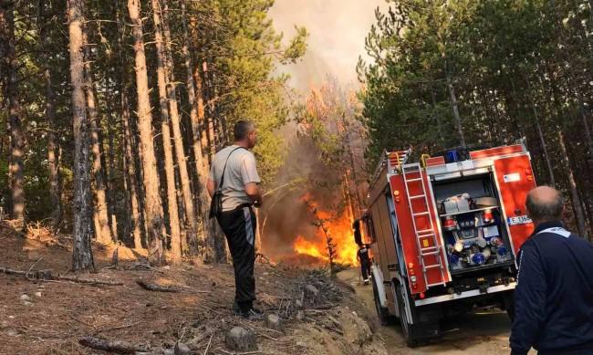 Пожарът в Свиленградско продължава, няма опасност за хората