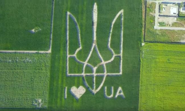 Украинци отгледаха държавния герб в царевична нива