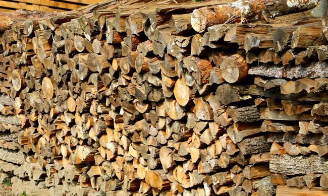 Цената на дървата за огрев - 50 лв. при горския, 100 лв. от склада