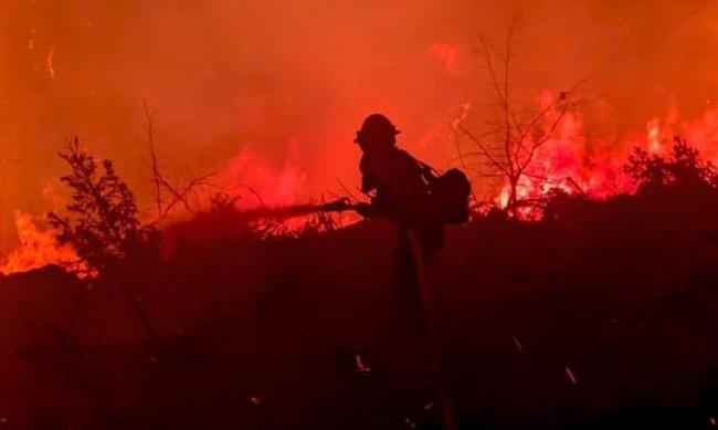 Пожарът в Калифорния нараства, поражда ли свой климат?