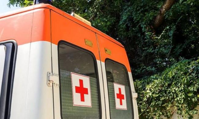 Клон на дърво падна и уби жена в Разградско