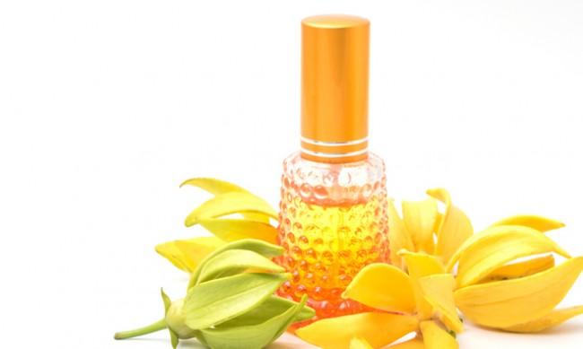 6 аромата за повече баланс и по-малко стрес