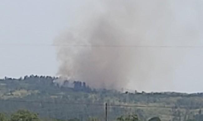 Пожарът над село Виден пламна отново