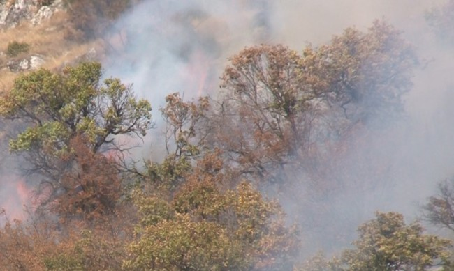 Пожарът край хасковското с. Брягово е овладян напълно