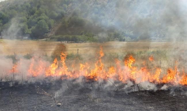 Пожар спря движението по пътя Кюстендил - Дупница