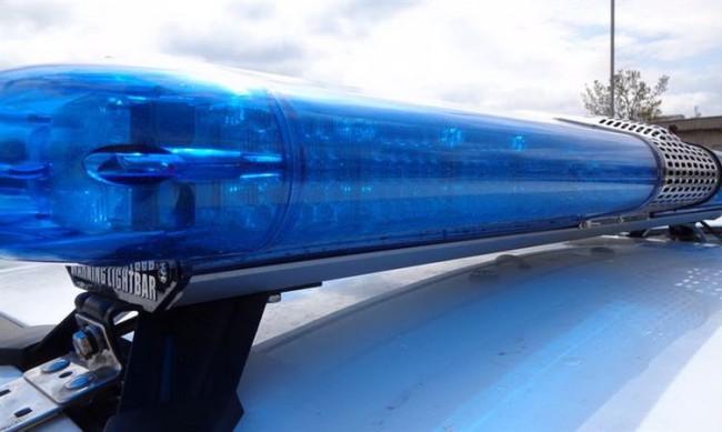 Пуснаха от ареста собственика на питбула, нападнал дете