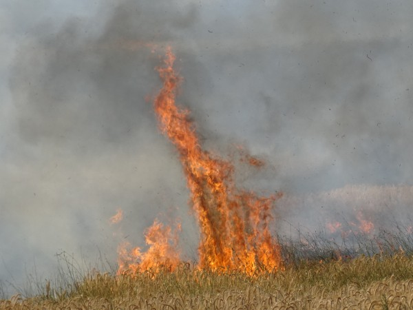 Голям пожар гори в Стара Планина, близо до Рожен и