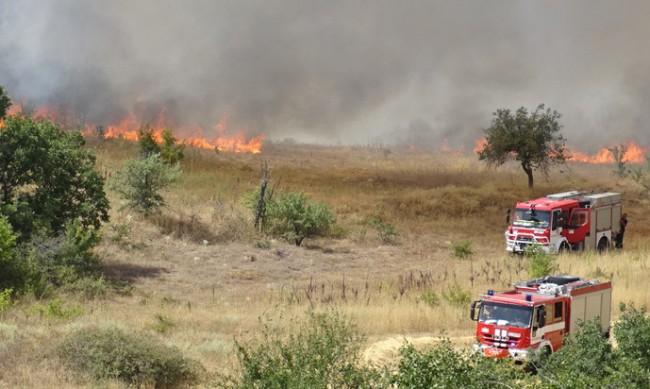 Над 200 пожара са избухнали за ден в страната, има 1 жертва