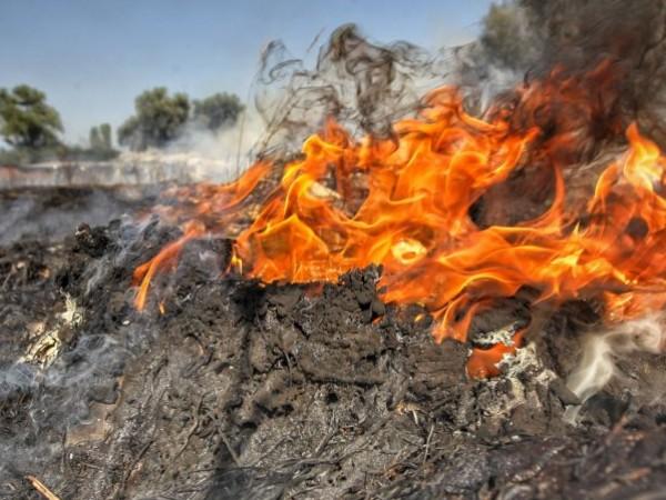 """""""Днес на територията на страната са възникнали 70 пожара, 40"""
