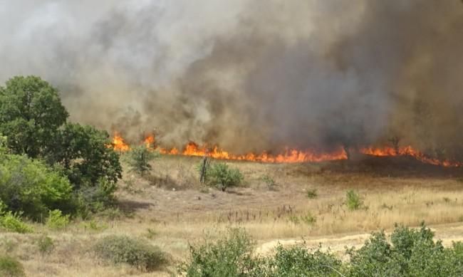 Пожарът в Долно село е напълно овладян