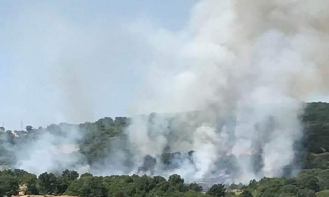 Нов пожар в Хасковско, пламна гора