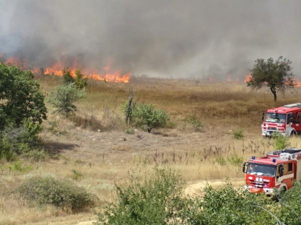 Борбата с пожара край санданското село Петрово продължава. Рано тази