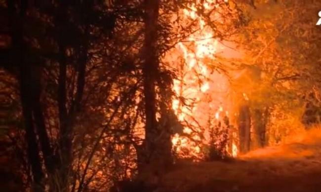 Пуснаха тока и водата в опожареното Долно село