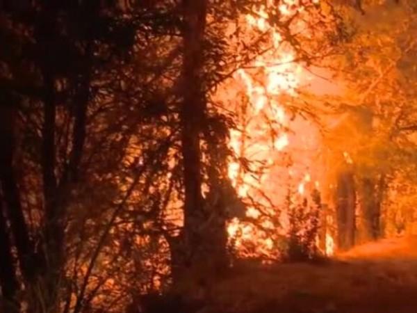 В едно от най-засегнатите от пожарите населени места в страната