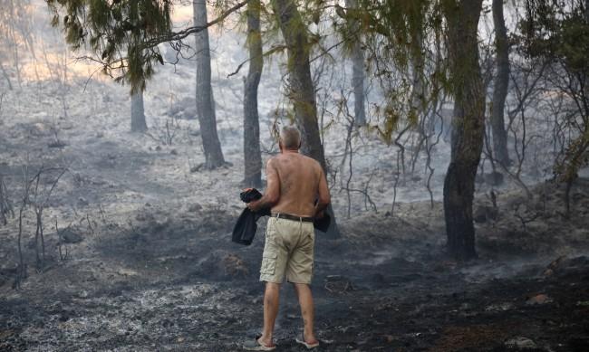 Пожарите на полуостров Пелопонес са с 10-километров фронт