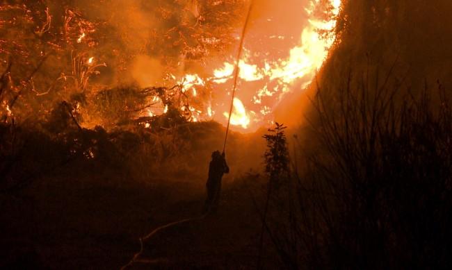 Пожарите в Гърция отново се разгарят, наложиха се нови евакуации