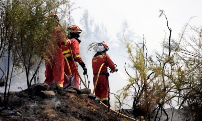 Пожар в землището на Стрелча
