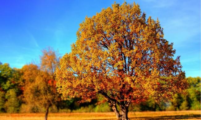 Есента наближава, но топлото време остава поне до 10 септември