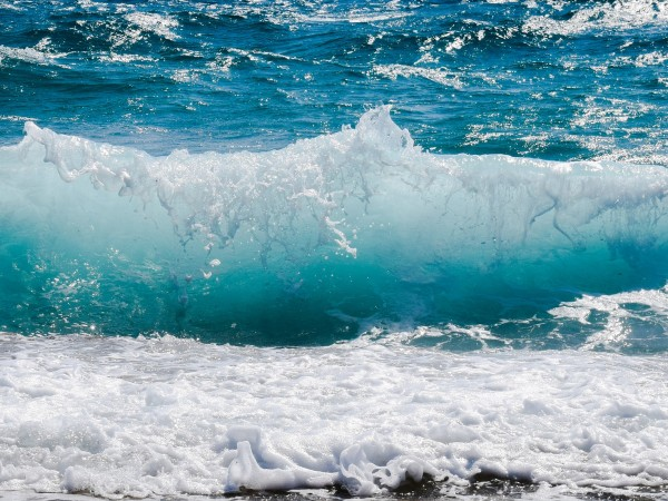 Делта вариантът на COVID-19 може да оцелее във вода до