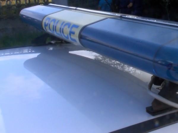 Полицаи от РУ на МВР във Вършец са разкрили за