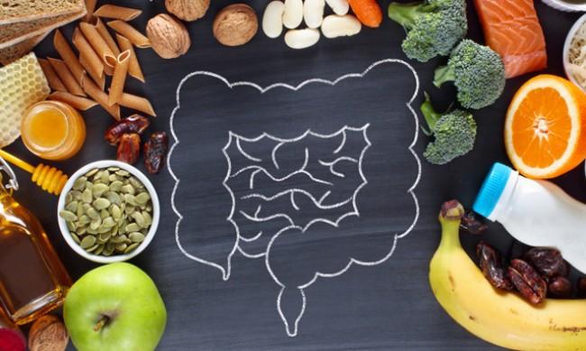 Кои храни поддържат здрави черва