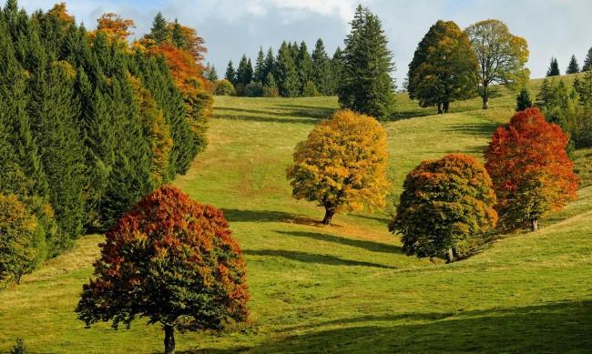 Есента напомня за себе си, предстои застудяване през следващата седмица