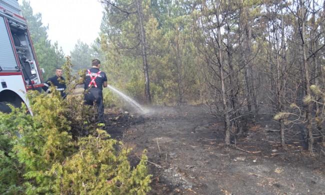 Пожарът над Разлог е ограничен, гасят се отделни огнища