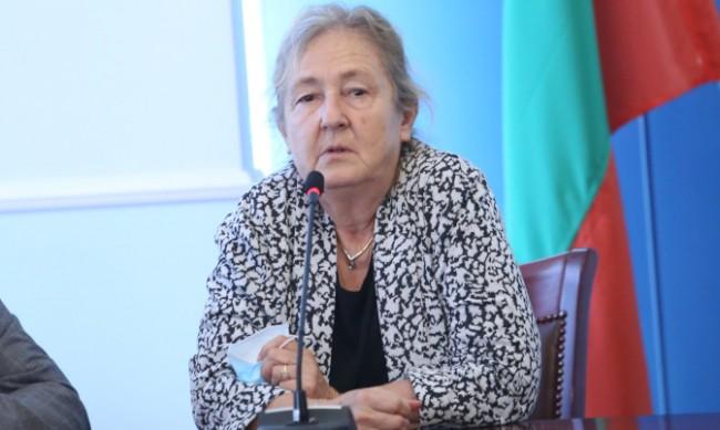 Проф. Кожухарова: Това в момента не е пик, а задържане на болните