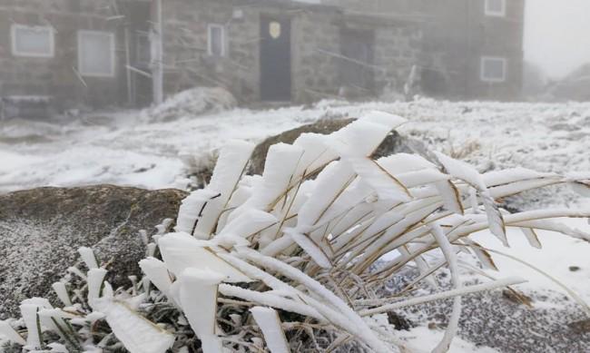 Първи сняг на Витоша, Черни връх побеля
