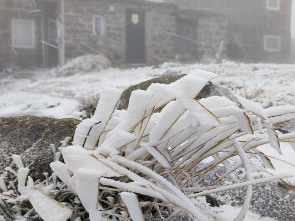 Първи сняг заваля на Витоша. Кадри, публикувани в социалната мрежа,