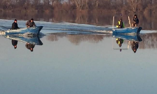 Блокирани кораби край Белене заради ниското ниво на Дунав