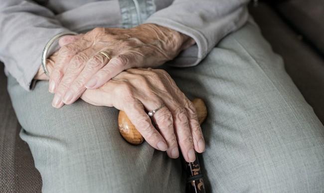 Издирват 96-годишна нацистка, избягала преди процеса - каква е историята й?