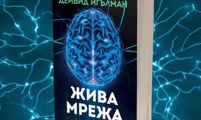 """Колко е адаптивен на човешкия мозък в """"Жива мрежа"""""""