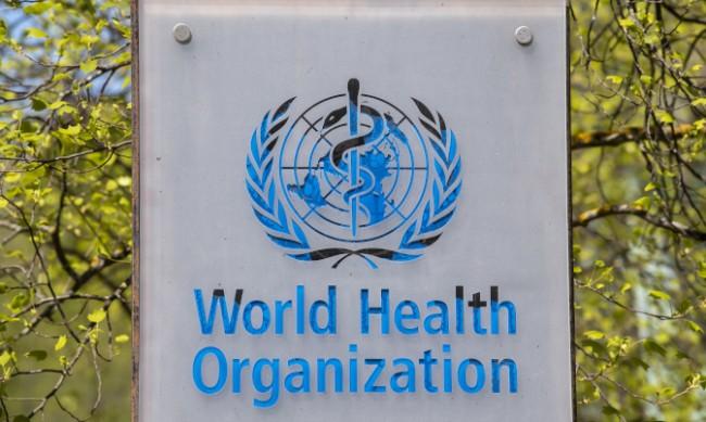 СЗО: Не трябва да се изисква документ за ваксиниране при пътуване