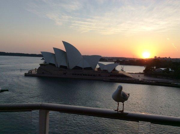 Изгрев слънце в Сидни
