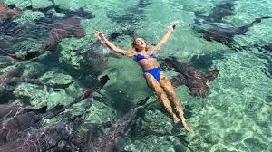 Заради уникалния кадър... Манекенка поплува с акули, но я нападнаха