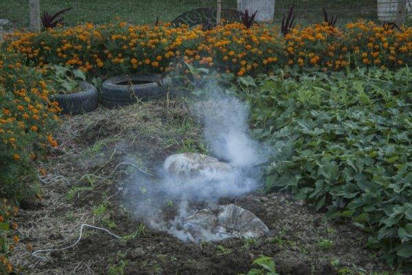 Hogyan lehet gyorsan égetni a karzsírt, gyorsan fogyókúrás tablettákat, miközben könnyedén lefogy
