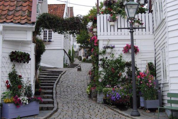 Живописна улица в Норвегия